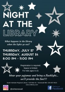 Copy of Night at the Library poster