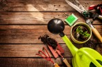 Gardening tools, watering can, seeds, plants and soil on vintage wooden table. Spring in the garden concept background with free text space.; Shutterstock ID 175282622; PO: PO# 027093; Job: SAMN IV00033451; Client: Walmart Stores, Inc/Sam's Club